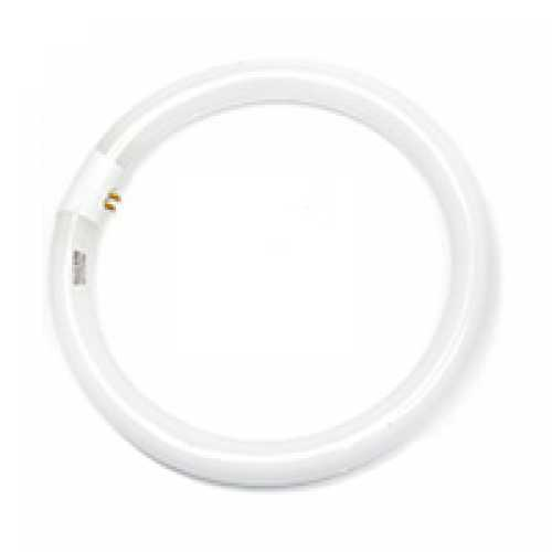 Lâmpada circular 32w - Cód: 2720 - Marca: Golden Plus