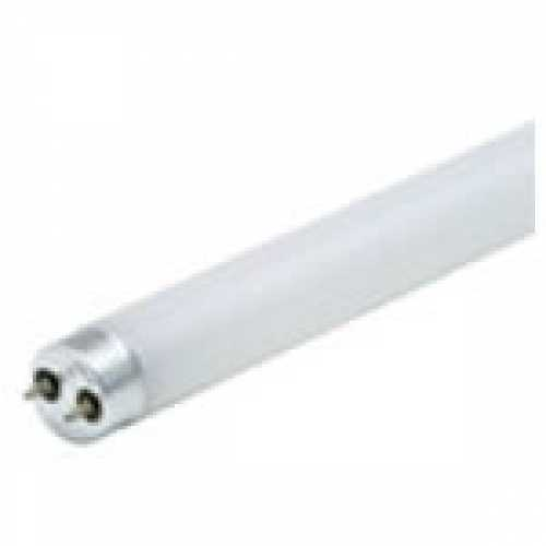 Lâmpada fluorescente 10w luz branca - Marca: Diversas